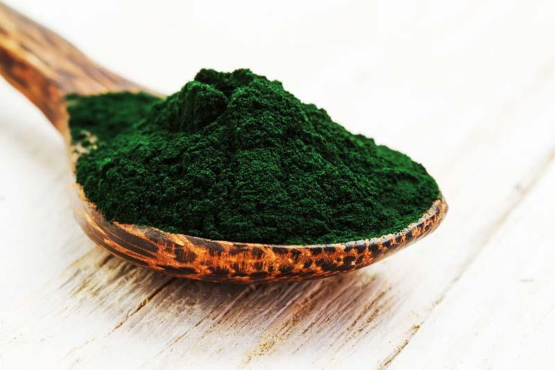 Spiruline Et Vitamine B12 : Achat  - Herbes - Bénéfices |  Quels sont les bienfaits ?