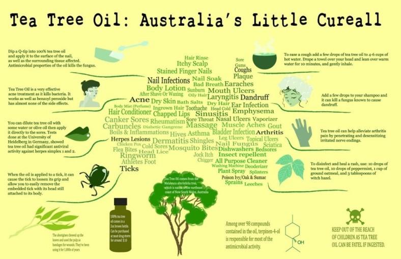 les bienfaits des huiles essentielles de tea tree