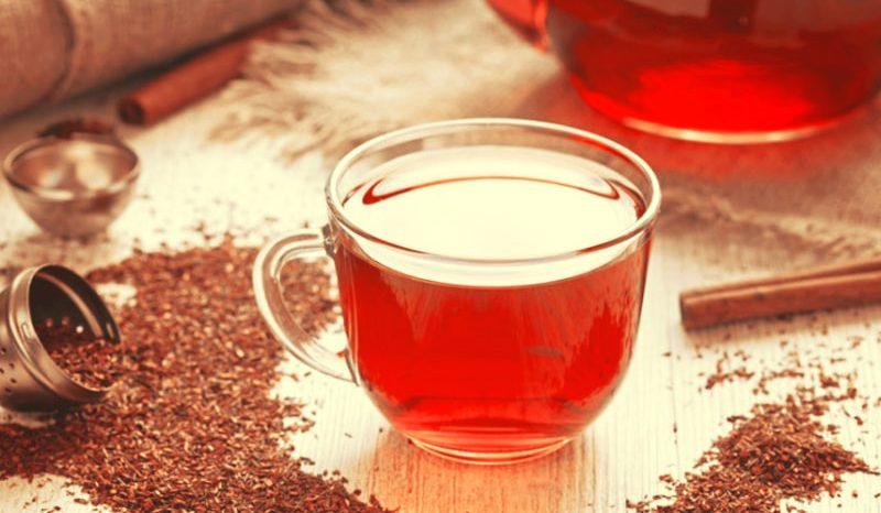 Thé Rooibos, les bienfaits d'un thé rouge à la saveur incroyable