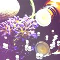 huile essentielles pour la concentration