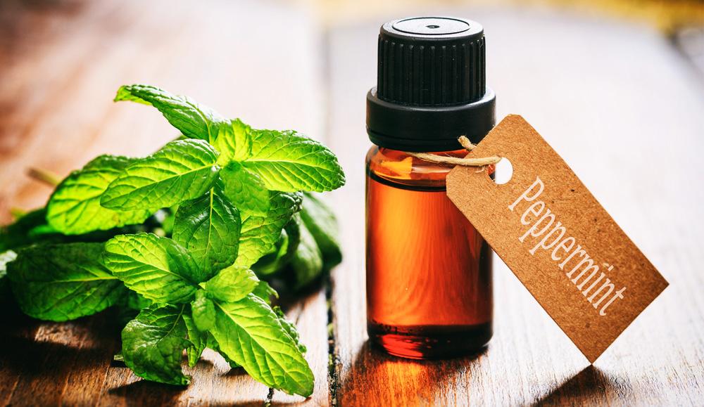 bienfaits de l'huile essentielle de menthe poivrée