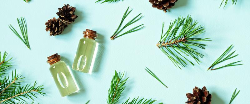 bienfaits de l'huile essentielle de cèdre