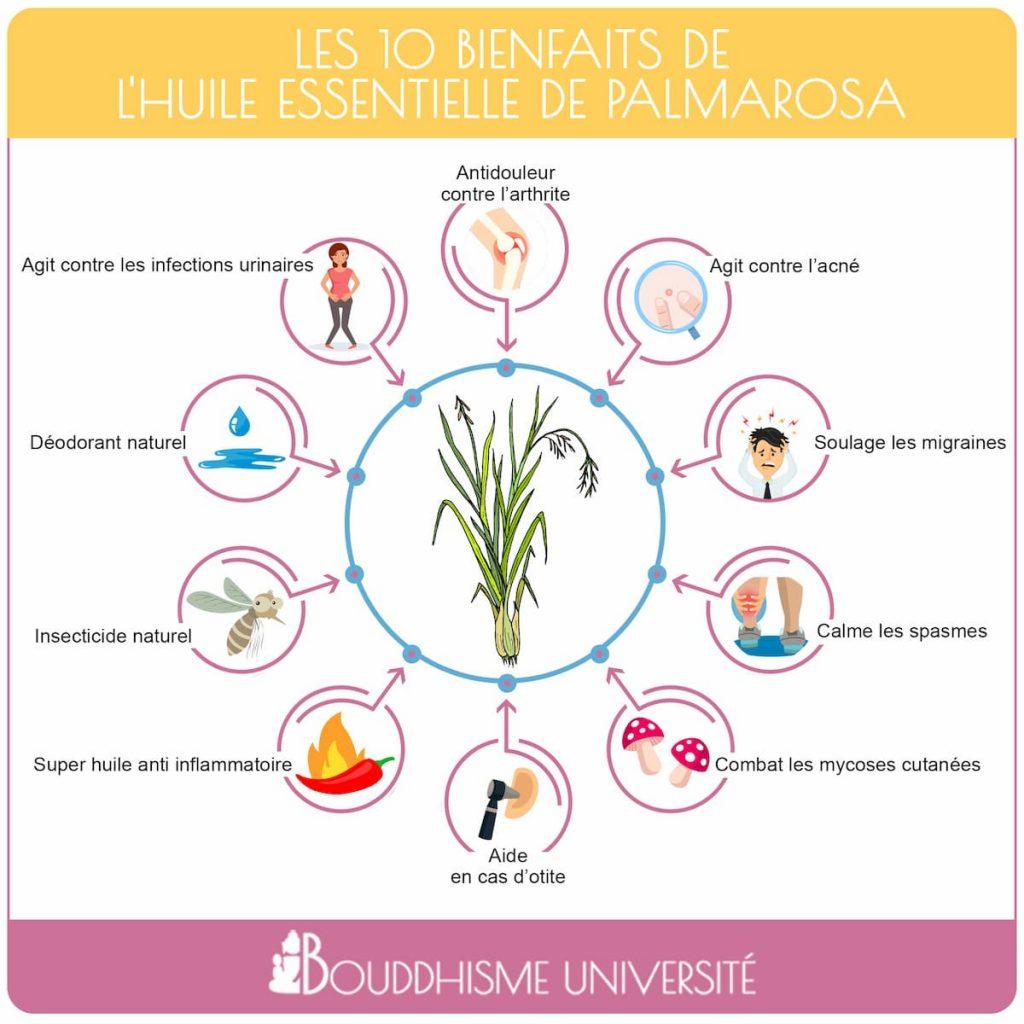 bienfaits de l'huile essentielle de palmarosa