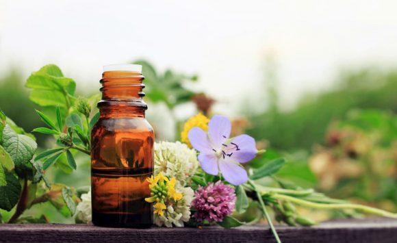 Naturopathie : découvrez-la en 10 Questions/ Réponses avec 3 thérapeutes certifiées