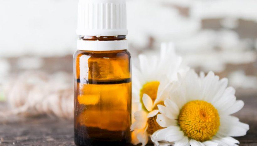 Huile essentielle de camomille romaine : bienfaits et usages de cette huile calmante