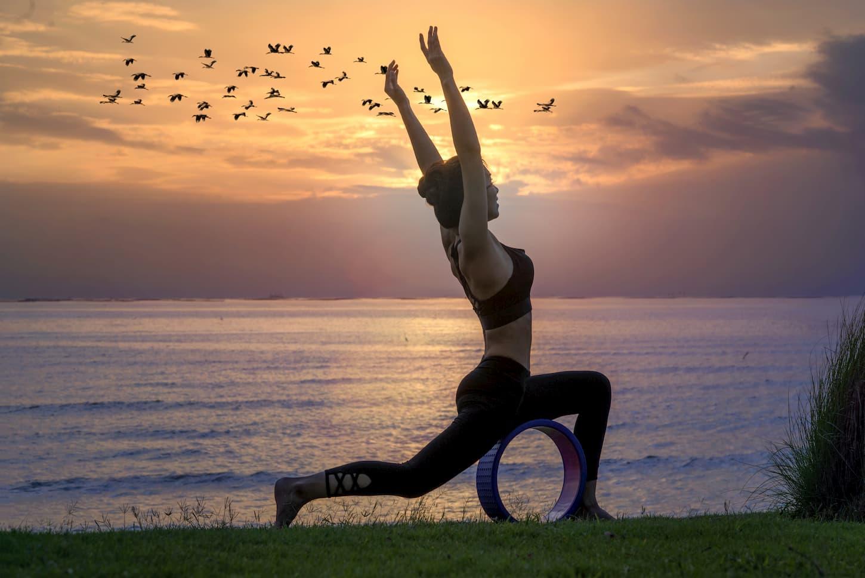 exercices yoga wheel