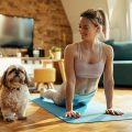 yoga chien