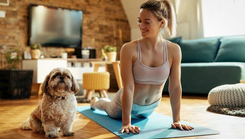 5 bienfaits de pratiquer le Yoga…avec son chien !