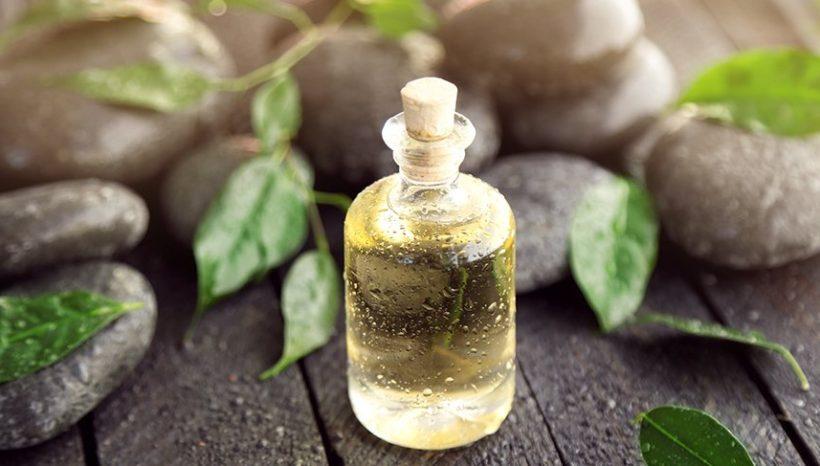 L'huile essentielle de Tea Tree : guide des 14 utilisations quotidiennes