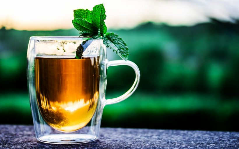 Tous les bienfaits d'une tasse de thé vert