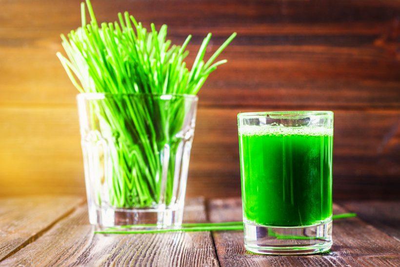 Jus d'herbe de blé, quels sont les bienfaits de cette boisson santé ?
