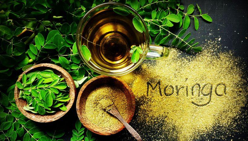 Êtes-vous familier du moringa, arbre de vie et plante miracle !?