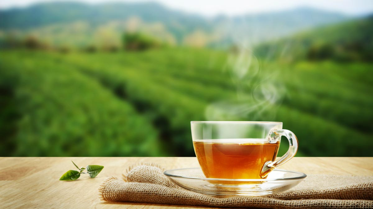 thé organique