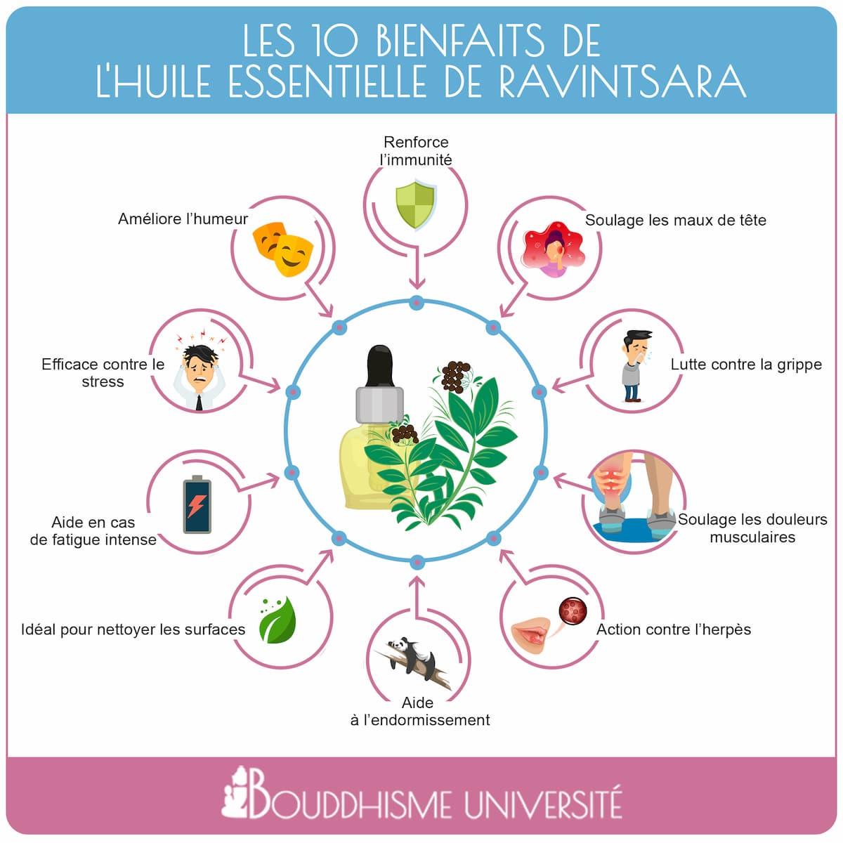 bienfaits huile essentielle ravintsara