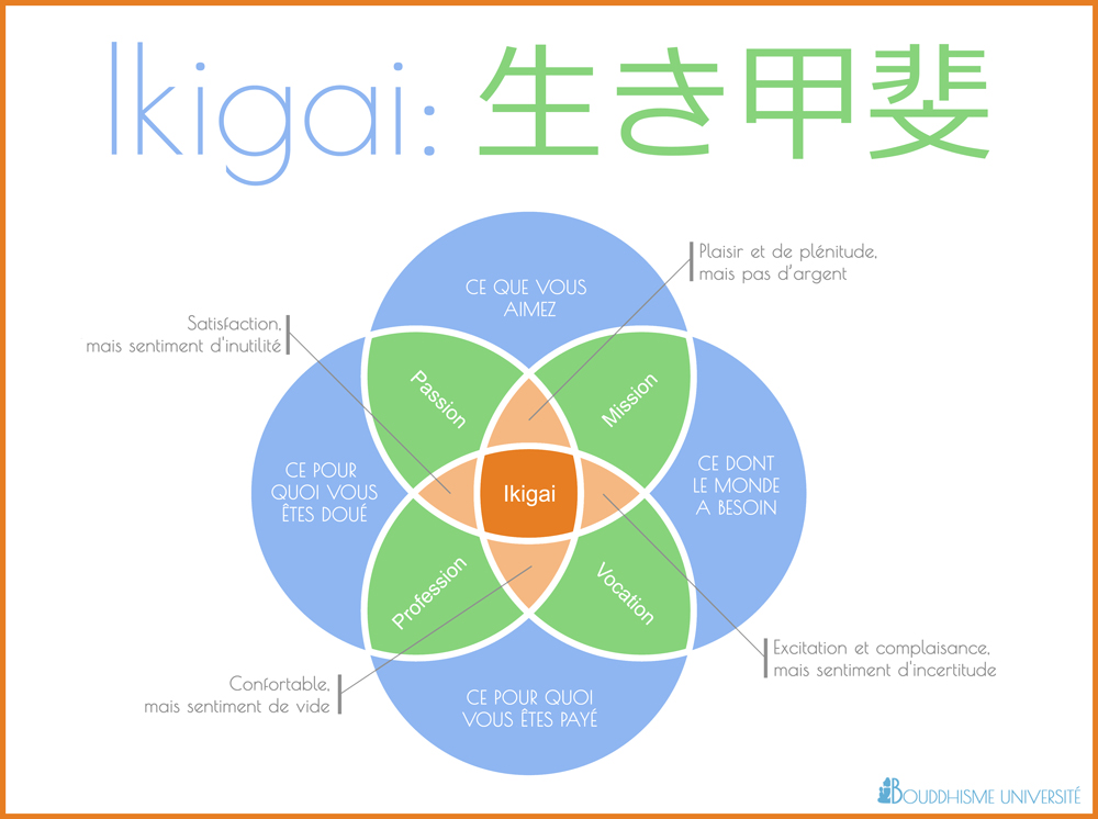 ikigai infographie