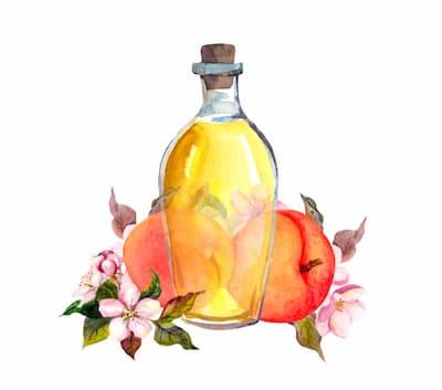 huile végétale de noyaux d'abricot
