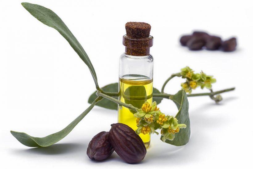 Tous les bienfaits de l'huile de Jojoba