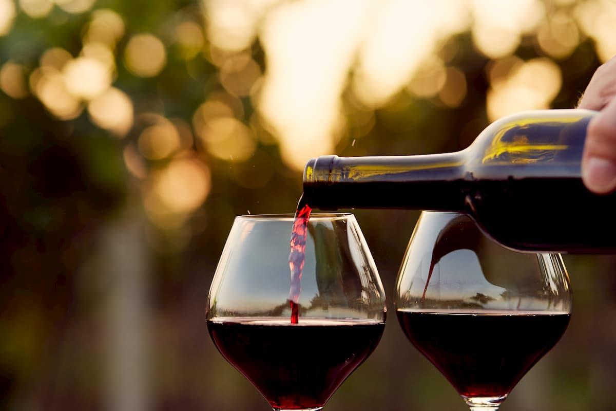 vin ayurveda