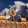 8 symboles bouddhistes